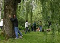 Der Baum der grosse Freund der Menschen