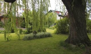 Guscha Garten (20)
