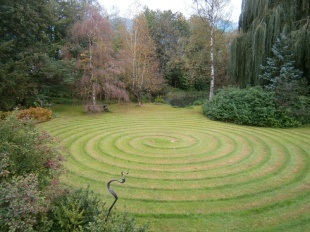 Guscha Spirale (25)